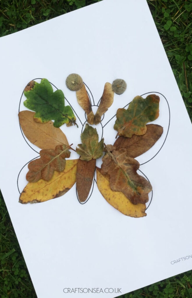 butterfly craft template colored with real leaves