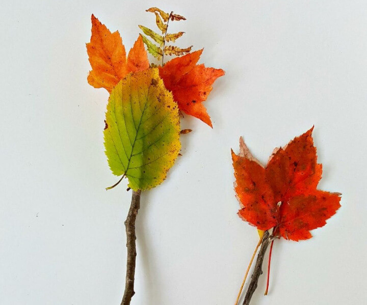 DIY wands made with natural elements for fall season