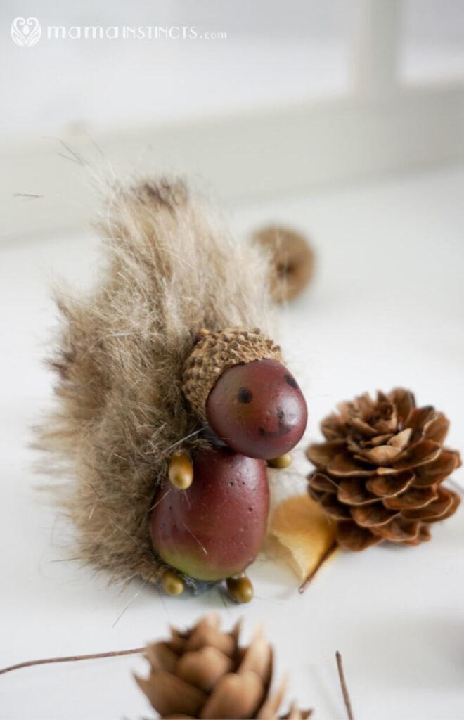 cute DIY craft of squirrel made with acorns